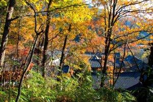 노벨상 수상작가 펄벅 여사(Pearl S. Buck/1892∼1973)가 본 한국의 가을