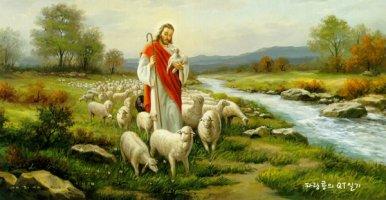 어린양 예수님 보혈의 은혜