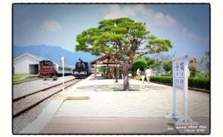 기차와 소나무/ 이규석
