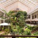 방콕여행 - 파타야 두짓타니 호텔 이용 후기