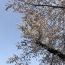 [daily] 완연한 봄 일상 (@을지로 <b>로스트</b><b>앤</b><b>파운드</b> / 성수 에이투비 / 서촌 MK2)