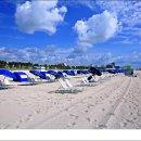 미국 대표 휴양지 플로리다 마이애미 해변