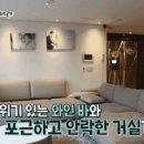 박인비 연봉 재산 집안