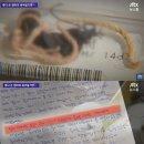 이대목동병원 신생아 사망 사건 전례없는 초유사태