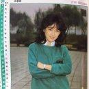 스타 캘린더 / 조용원/1983.12
