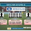 '법인카드 펑펑' 축구협회 조중연·이회택·김주성·황보관 등 입건