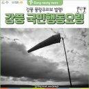 [강릉소식] 강풍 발생 시 국민행동요령 메뉴얼 안내