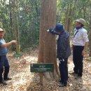<b>산림청</b>, 캄보디아와 <b>자연</b><b>휴양림</b> 분야 협력 강화 업무협약