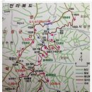 블랙야크100대명산 장성 축령산 편백나무 피톤치드 산책길
