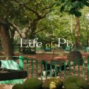 (스포O) 라이프 오브 파이, 2012: 종교와 철학을 향한 완벽한 성찰