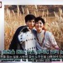 안희정 부인 아내 민주원 나이 직업 아들 결혼 풀스토리 ♥ 뉴스 속보 || TWHKstar