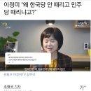 """이정미 """"왜 한국당 안 때리고 민주당 때리냐고?"""