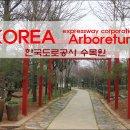 [수목원] 한국도로공사수목원 1 - 깽깽이풀 목련 별목련 히어리 조각자