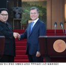 남북정상회담 판문점선언 국회 비준에 대한 생각
