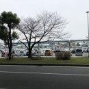 봄이 오기전에... : 후쿠오카공항 국내선터미널, 라멘활주로 우나리