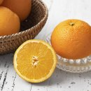 <b>엠팍</b> 고당도 네이블 오렌지