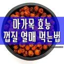 마가목 효능 (열매 껍질) 먹는법