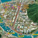 강원 화천ː화천 산천어축제 - 2. 산천어 축제장 구경&정보