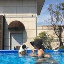 강주은이 집 비운 사이에 옥상에 수영장 설치한 최민수와 아들들ㅋㅋㅋㅋㅋㅋㅋ.jpg