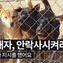케어 동물구조 안락사 유투브 영상모음 반려견 동물단체