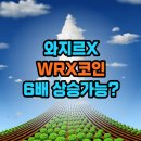 인대의 대표 <b>코인</b> 와지르 <b>엑스</b>(WRX)는 왜! 욕먹는가?