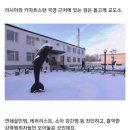 러시아 검은 돌고래 교도소