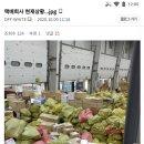 <b>CJ 대한통운</b> 택배 용인 허브 상황.jpg