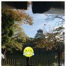 06 오사카의 마지막 날