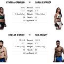 UFC219 사이보그 VS 홈 대진표 - 사이보그의 흥행 파워는 어떨까?
