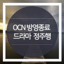 OCN 방영종료 드라마 정주행 하기