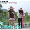비행소녀 신효범 비혼라이프 공개