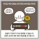계약연장 요구하는 JBJ 팬에게 마지막 콘서트를 선물한 소속사