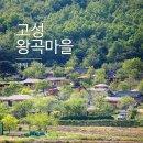조금 이른 가족여름휴가 Part 3] 고성 왕곡마을을 조용히 한바퀴 돌아보고...