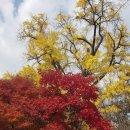 가을 우체국 이기철 시