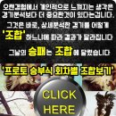 원주동부 서울SK 3월26일 농구분석