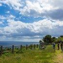 거제 지심도 방문기 - 동백나무가 유명한 산책하기 좋은 섬