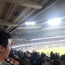 [미국 여행 ] LA 다저스 스타디움 후기