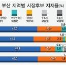 [6·13 여론조사-부산시장] 원도심·동부산 오거돈 독주, 낙동강은 서병수 선전