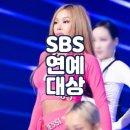 2020 <b>SBS</b> 연예대상