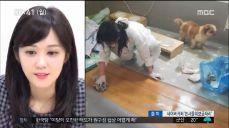 [투데이 연예톡톡] 장나라, 유기견 보호소 봉사 포착 '훈훈'