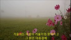 가을의 노래 / 詩 김대규 (낭송; 김미숙)