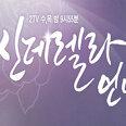 홍회장 역